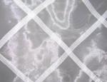 White Ariel Lattice Overlay