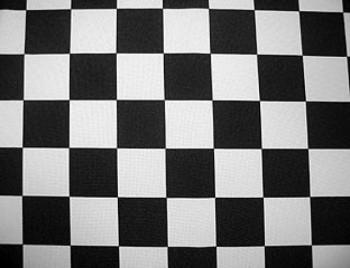Black & White Racing Check