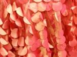 Coral Petal Taffeta