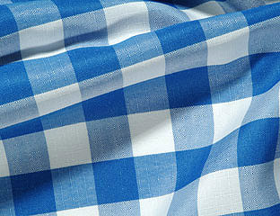 Royal & White Gingham Check